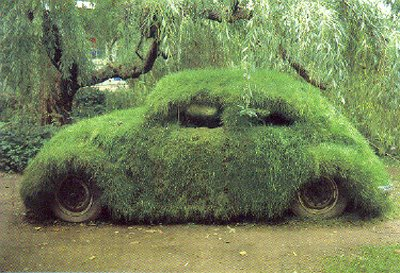 grass-covered-car